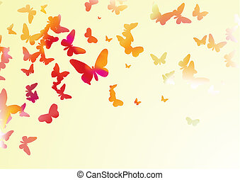 butterflies - many colorful butterflies of different forms...