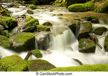 Black Forest Brook LE - Long exposure shot of a romantic...