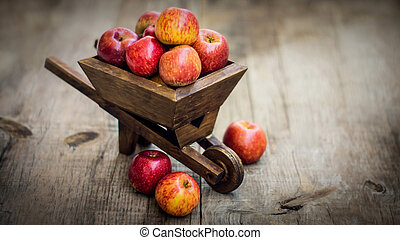 Fresh Red Apples - Red Apples in a miniature wheelbarrow on...