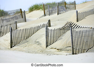 sand dunes for environment on the beach - fences setup for...