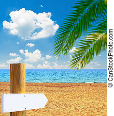 Tropical beach with empty wooden sign - Paradise beach with...
