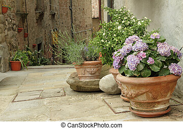 flowering plants in decorated ceramic vases on tuscan narrow...