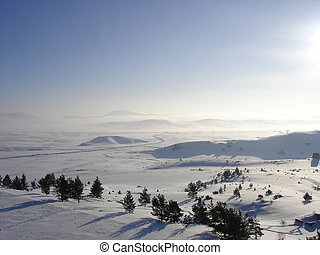 snow landscape - Dawn on white snow landscape and trees...