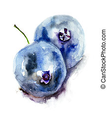 Blueberries, watercolor illustration