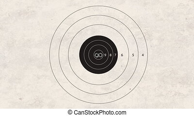shooting target accuracy - gun shoot to the shooting target...
