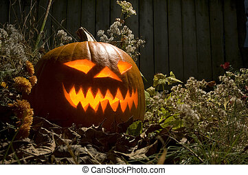 Lighted Jack O lantern - Lighted Halloween Jack O Lantern at...