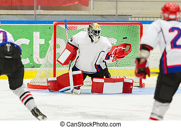 Ice Hockey Goalie - Tries to catch the puck