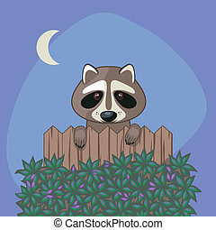 Cute Raccoon - Cute raccoon standing up over somebodys...