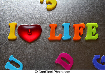 i love life spelled out using colored fridge magnets