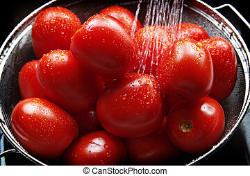 Washing the Garden Harvest - A harvest of Roma Tomatoes...