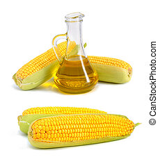 Bottle with oil and a corncob. On white background.