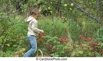 Boy with apples.