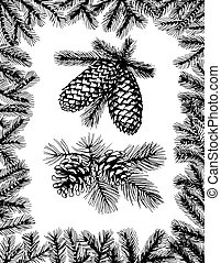 Barnches with pine cones and fir frame - Hand drawn fir...