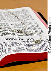 Rosary Bible Page - Job - Close up of Job bible page with...