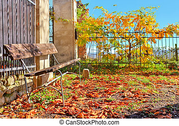 Wooden bench and red leaves covering the ground in Italy -...