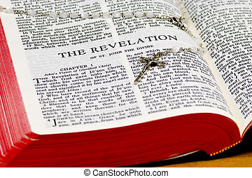 Rosary Bible Page - Revelation - Close up of Revelation...