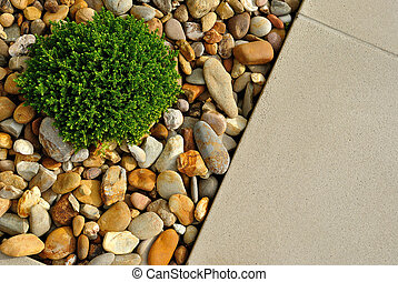 Beautiful landscape design - Landscaping combinations of...