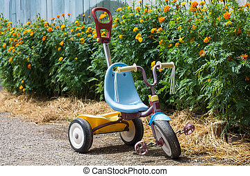 kid tricycle in garden