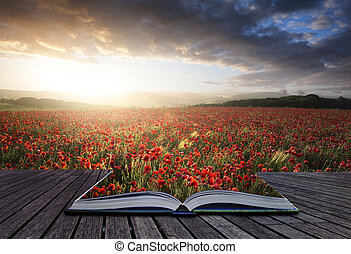 Creative concept pages of book Beautiful landscape image of Summer poppy field under stunning sunset sky
