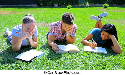 Three students in park reading book - Happy students in...