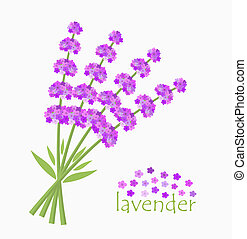 Lavender flowers bouquet