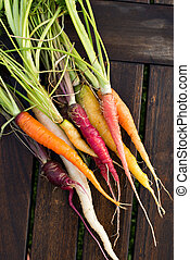 Fresh colorful carrots - Colorful assortment of fresh...