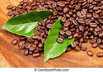 café,  coffee), madeira, feijões,  (arabica, assado