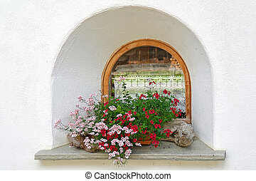 geraniums in old-fashioned window - Pink and white geraniums...