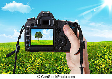 The landscape and digital photographic camera - Woman...