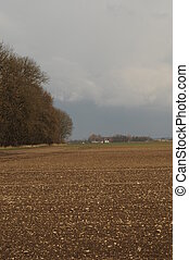 Landscape 025 - Fields before a heavy wheather.