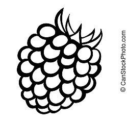 Vector monochrome illustration of raspberry logo. Many...