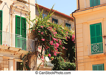 Architecture in Tropea - Typical architecture with green...