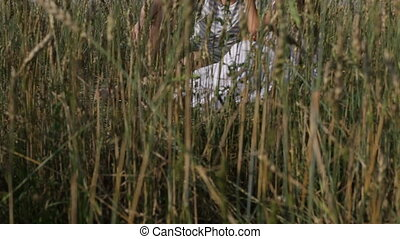 Romantic leisure