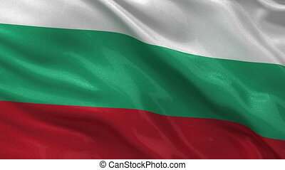 Flag of Bulgaria seamless loop