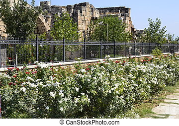 iron fence with beautiful flowers