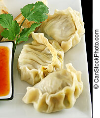 Chinese Dumplings 7 - Delicious fried pork and vegetable...