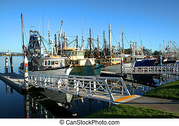 Shrimp and Fishing fleet at dock - Prawn trawlers and...