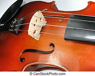 musical classic violin macro detail close-up