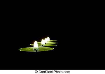 Candlelight - A candlelight concept. Four candle in black...