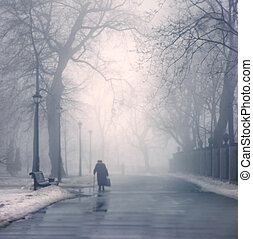 Walk in the Park - Winter day, passersby walk in Mariinsky...