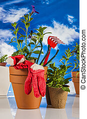 Garden stuff,bright blue background - Gardening concept