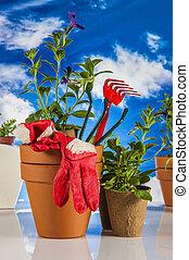Garden stuff,bright blue background - Gardening concept