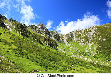 Alpes, Japão,  carl,  senjyojiki
