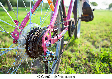 Closeup view of bicycle sprocket on the rear wheel of the...