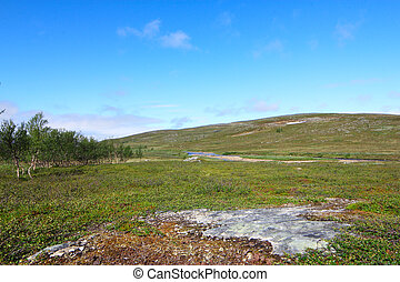 Tundra Landscape - Beautiful tundra landscape in northern...