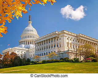 US Capitol at sunny day, Washington DC