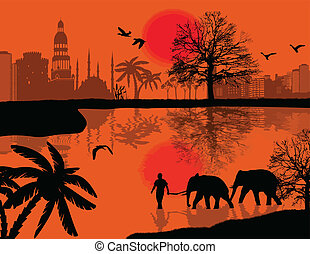 Man with elephants on water