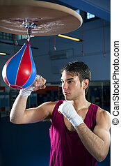 boxing - young adult man hitting speed bag in gym Copy space...