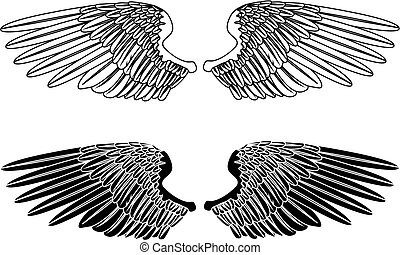 Black and White Wings - An illustration of two pairs of...