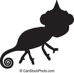 Silhouette chameleon